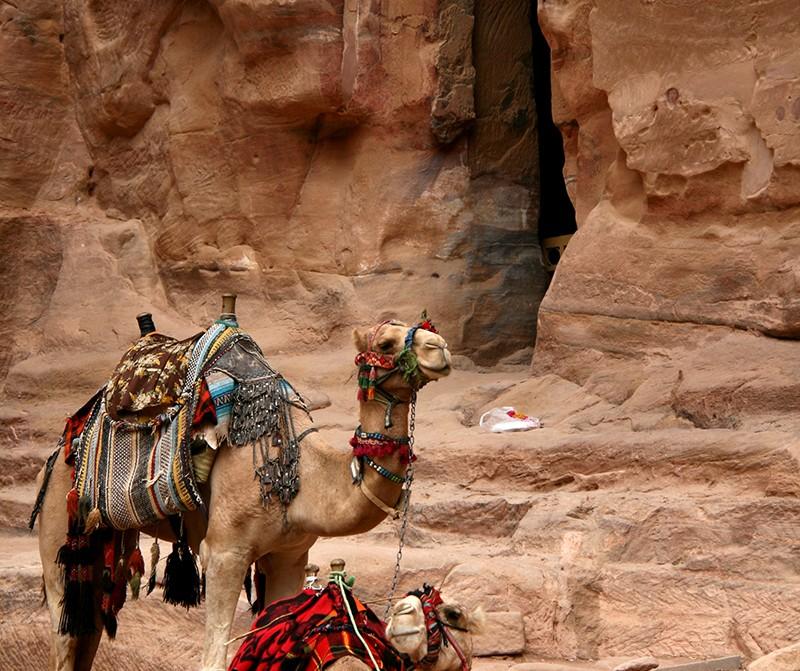 Petra, Giordania - Immagini Giordania